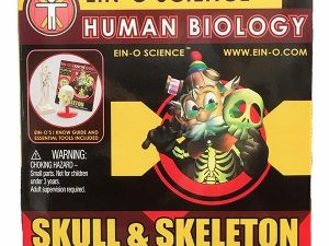 Skull and Skeleton Science Kit