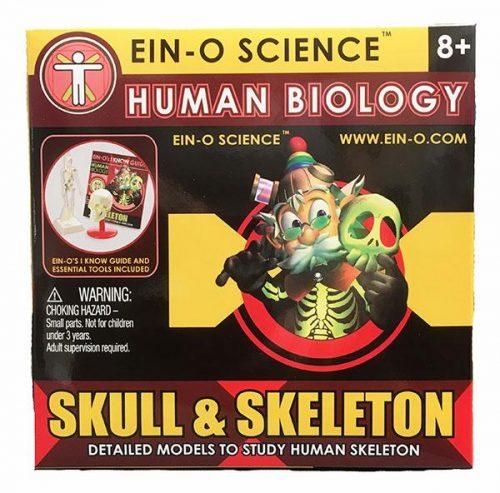 Skull and Skeleton Science Kit