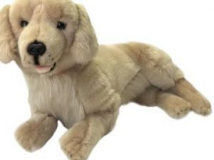 Nana's Weighted Toys -Sandy the 1.8kg Golden Retriever Pup