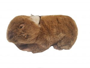 Nana's Weighted Toys - Wally the 2kg Wombat